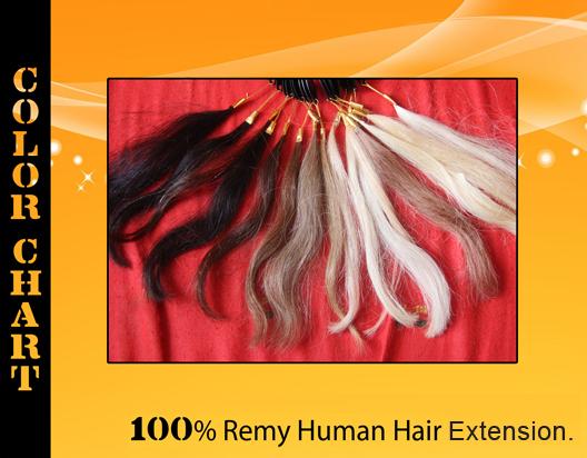 Renuka Agency banner