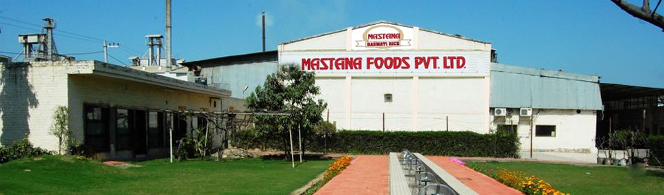 Mastana Foods Pvt Ltd Banner