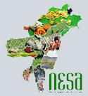 Nesa Food
