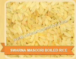Swarna Masoori Boiled RICE