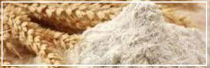 Shri Shyam Rice Mill