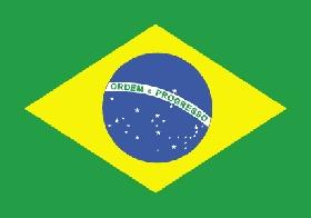 brazil.flag.jpg