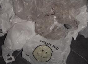 Plastic.Bag.jpg