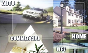 insurance generic