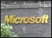 Microsoft.9.Thmb.jpg