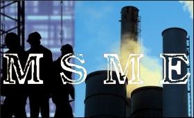 MSME.9.jpg