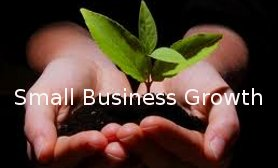 Small.Business.Growth.9.jpg