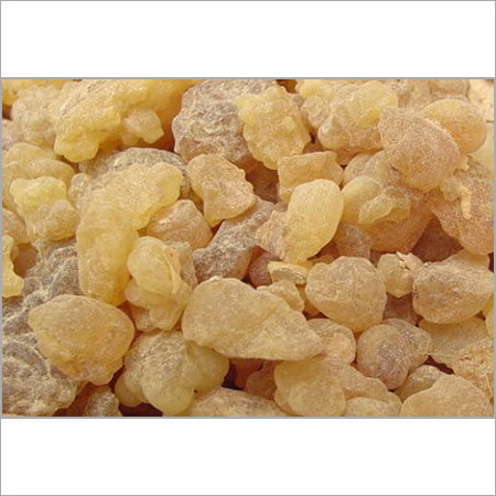 Gum Olibanum Supplier, Exporter Mumbai, India
