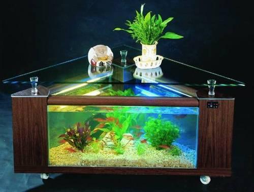 Table aquarium in hangzhou zhejiang china hangzhou for Arowana fish tank decoration