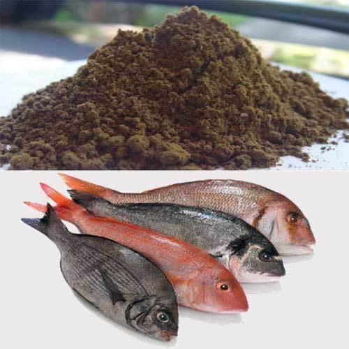 Чили: Высокие цены компенсировали падение объемов экспорта рыбной муки