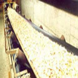Food Grade Conveyor Belt