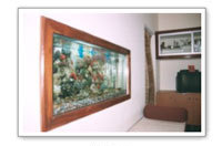 Wall Mounted Aquariums