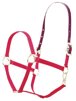 Nylon Head Collar (Halter)