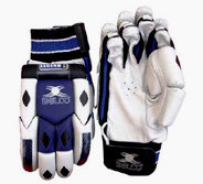 Batting Gloves (BP - 05)