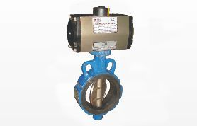 Butterfly Valves Wafer - Lug Type Eco Series