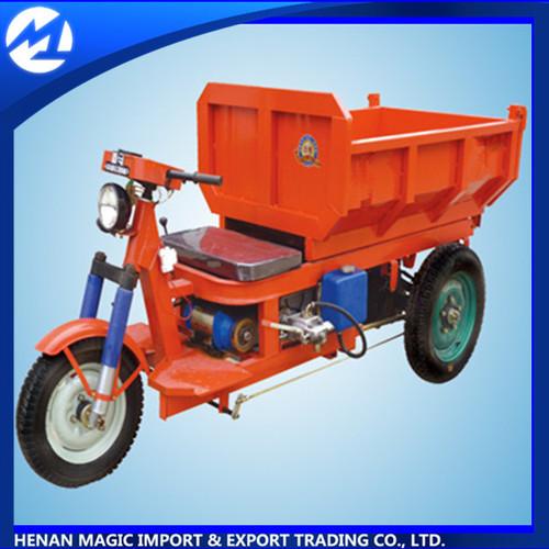 3 Wheel Cargo Tricycle ET1304030-1 60V