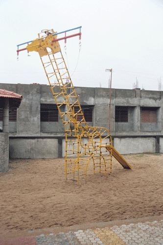 Giraffe with Swing and Slide