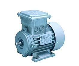 Single Phase Gear Motor