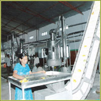 Ripe Mango Powder Machines