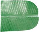 Sas Artificial Paper Banana Leaf