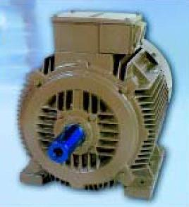 Tefc 3 Phase Squirrel Cage Induction Motors In Bhiwandi