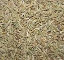 Cumin Seed