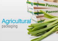 Agricultural Packaging Boxes