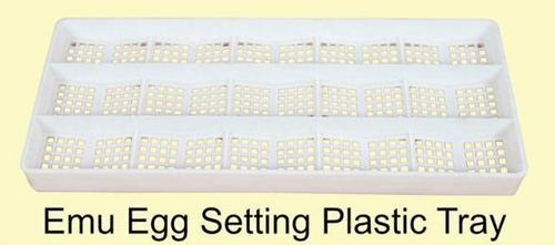 Emu Egg Setting Plastic Trays