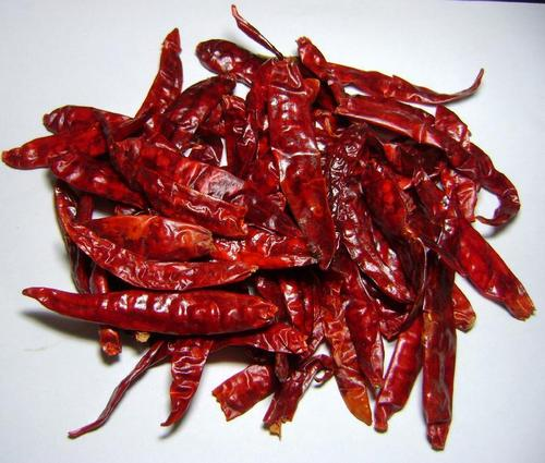 Stem Cut Dry Red Chilli
