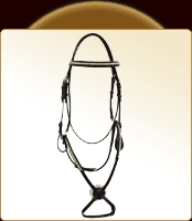 Leather English Bridle