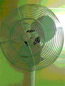 Heavy Duty Pedestal Fans