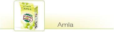 Low Temperature Cold Dried Amla
