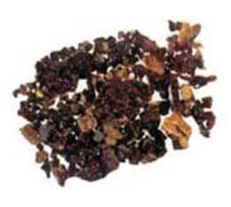 Kamarkas (Salvia Plebeian)
