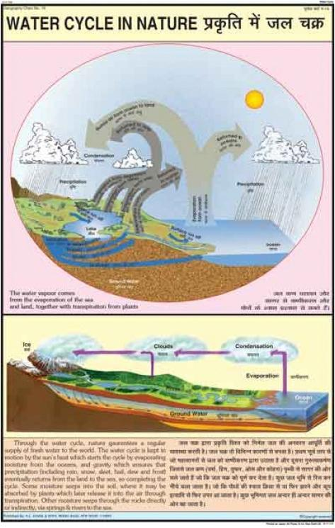 Water Cycle In Nature Chart in Model Basti, New Delhi ...