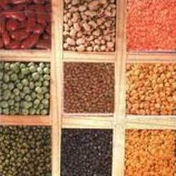 Nutritional Pulses