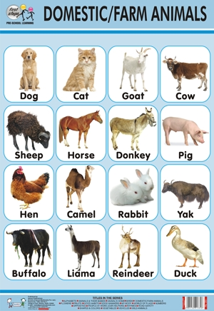 Domestic animals pictures with hindi names - photo#19