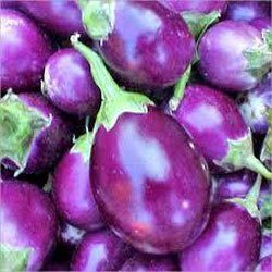 Brinjal
