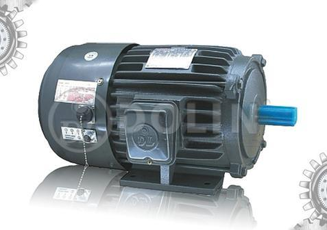 Ac three phase inverter duty induction motor aeef vf for Inverter for 3 phase motor
