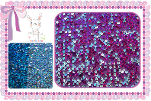 Flapped Sequin Embroidery Fabric