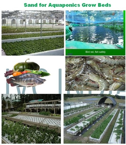 aquaponics in india Aquaponics in india, jaipur 18k likes aquaponics in india is revolutionizing the indian agricultural landscape with high-output, chemical-free.