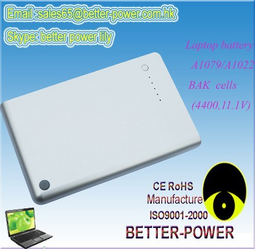 BAK Cells Battery For A1079/A1022/A1060
