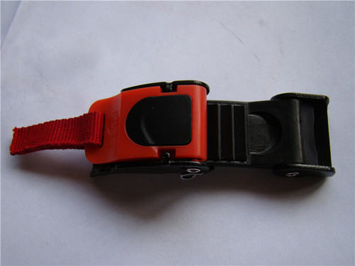 Micrometric Buckle