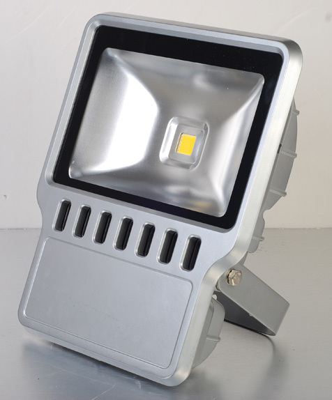 Led Flood Light (Et-Fl100w)