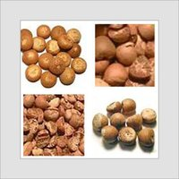Betelnut