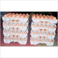 Table Eggs-Brown Shell