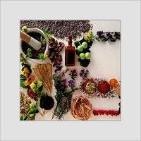 Medicinal Herbs & Plants