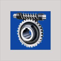 Worm and Pinion Gear