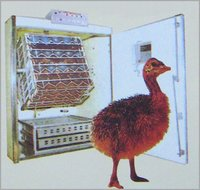 Light Duty Emu Incubator