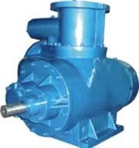 Bi-Screw Pump