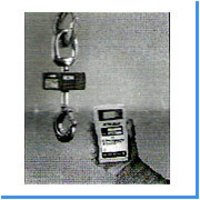 Crane Weigh Scales